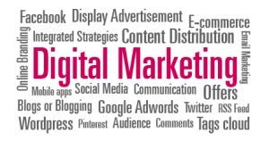 Pink Fish Marketing, Digital Marketing